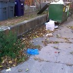Overflowing Trash Can at 86 88 Roseclair St, Dorchester