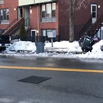 Litter at Intersection Of W Dedham St & Shawmut Ave, Roxbury
