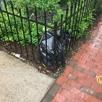 Residential Trash out Illegally at 592 Columbus Ave, Roxbury