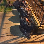 Residential Trash out Illegally at 21 Cortes St, Apt 1