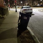 Residential Trash out Illegally at 1725 Commonwealth Ave, Apt 1, Brighton
