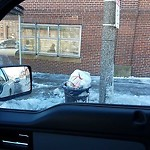 Overflowing Trash Can at 295 Columbia Rd, Dorchester
