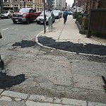 Pothole at Intersection Of Public Alley No. 436 & Berkeley St