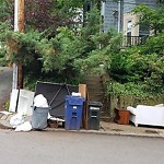 CE Collection at Intersection Of Sheridan St & Termine Ave, Jamaica Plain