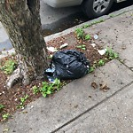 Residential Trash out Illegally at 69 London St, East Boston