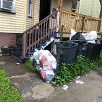 Residential Trash out Illegally at Intersection Of Elwyn Rd & Kenberma Rd, Dorchester