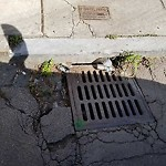 Catchbasin at Intersection Of W Haven St & Newland St, Roxbury