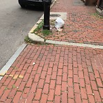 Residential Trash out Illegally at Intersection Of Public Alley No. 905 & Marlborough St