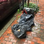 Residential Trash out Illegally at 57 W Cedar St