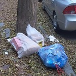 Residential Trash out Illegally at 207 W Springfield St, Roxbury