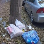 Residential Trash out Illegally at 206 W Springfield St, Roxbury