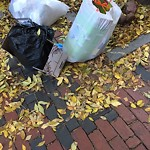 Residential Trash out Illegally at 78 Waltham St, Roxbury