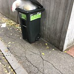 Residential Trash out Illegally at 11 Hereford St