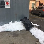 Residential Trash out Illegally at 476 Commonwealth Ave