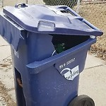 Recycling Cart at 107 Garfield Ave, 1, Hyde Park