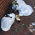 Residential Trash out Illegally at 31 Fairfield St, 1