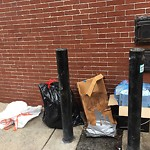 Residential Trash out Illegally at 3 Gloucester St