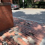 Broken Sidewalk at 44 Bradford St, Roxbury