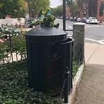 Overflowing Trash Can at Intersection Of Pembroke St & Columbus Ave