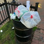 Overflowing Trash Can at Intersection Of Massachusetts Ave & Chester Park, Roxbury