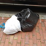 Residential Trash out Illegally at 47 Rutland Sq, 1, Roxbury