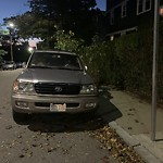 Abandoned Vehicle at 159 Forest Hills St, Jamaica Plain