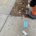 Litter at Intersection Of Gardner Pl & W Broadway, South Boston