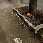 Litter at Intersection Of W Broadway & E St, South Boston