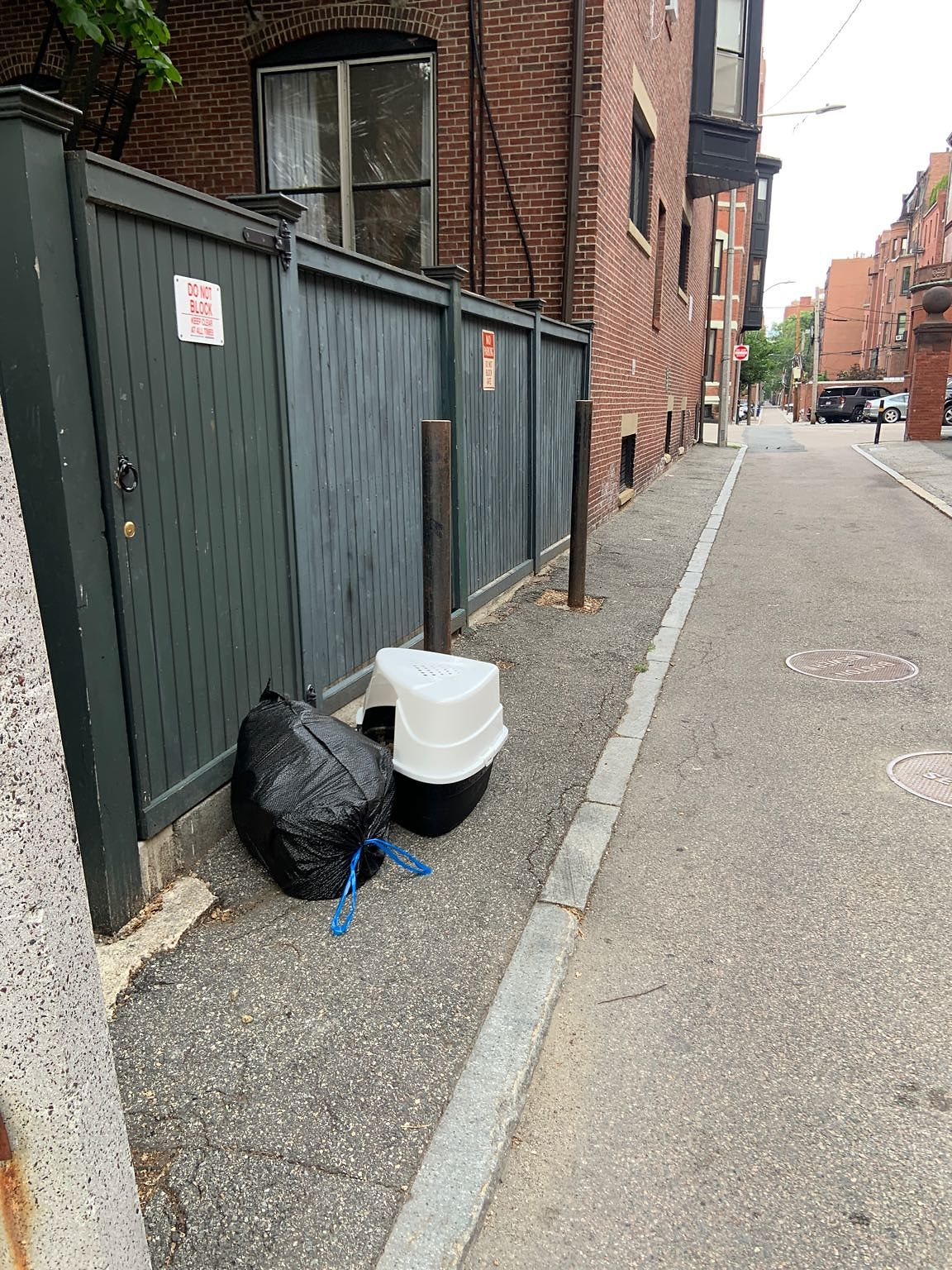 Trash out after Monday pickup - in alley 428