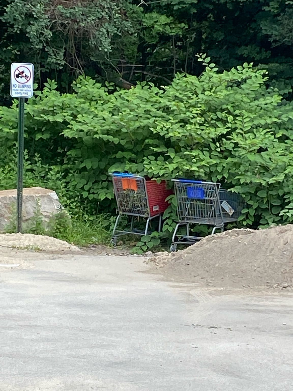Abandoned shopping carts even though there is a no dumping sign posted. Please have both carts picked up.