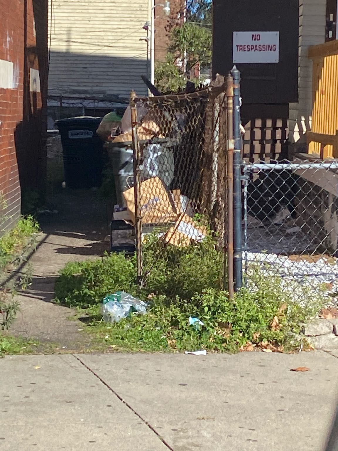Trash overflowing in yard.  Rats running around in yard and on sidewalk near bus stop.