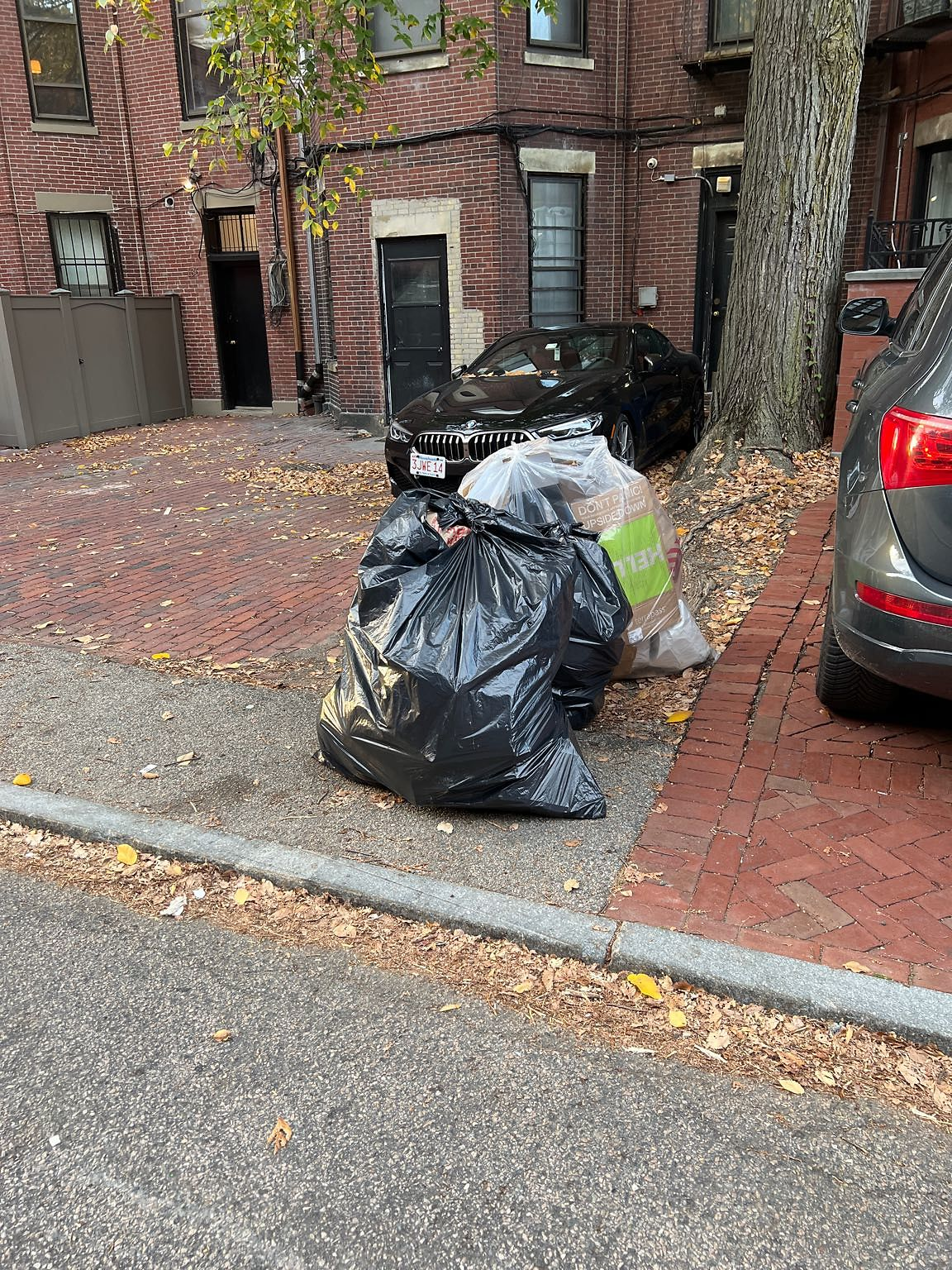 Garbage is out early on Sunday - rats are opening bags and running around the bags. Please do something about this. The garbage is put out early every time and even though the night before is allowed later on, this situation of garbage without bins is…